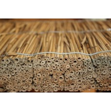 Panels heat-insulated reed